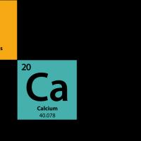 people-catalysts